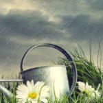 Impianto di irrigazione con Raspberry Pi: il sistema di rilevamento pioggia (terza parte)